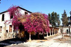 Antiguo casona donde funcionaba el manicomio San Ramón, construcción antigua de la Iglesia San Ramon