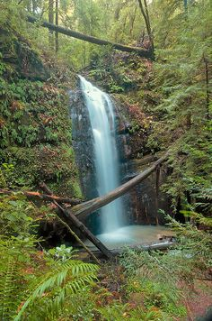 Big basin redwoods state park waterfalls map