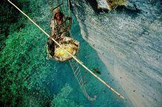 Honey Hunters of Nepal - Nepal 8th wonder