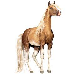 Sooty For me, Pferd Paint Horse Brauner mit Tovero-Scheckung - Howrse