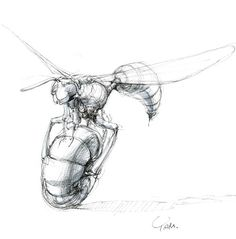 山中俊治の「デザインの骨格」 » 車輪を持った生き物