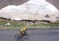 VAI PIRATA ... VIVA #PANTANI  #PersonalTrainerBologna #bicicletta #bici #ciclismo #bdc #sport #endurance #alimentazione #nutrizione sportiva  www.stefanomosca.it