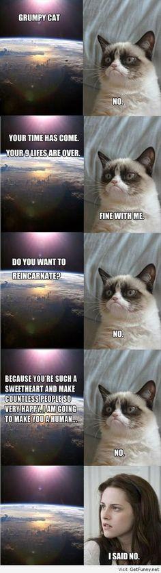 Bella isn't worthy enough to be grumpy cat's reincarnation.