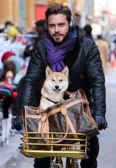Lorenzo Martone Louis Vuitton Monogram Canvas Dog Carrier
