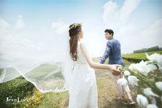 Jeju green tea field pre wedding photo, Korean pre wedding photo shoot package…