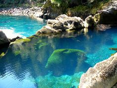 Huilo-Huilo Biological Reserve in southern Chile Places to see before you die Flathead Lake Montana, Oh The Places You'll Go, Places To Travel, Places To Visit, Dream Vacations, Vacation Spots, Vacation Places, Adventure Is Out There, Ponds