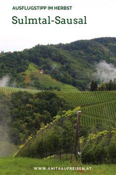 Vineyard, Outdoor, Campsite, Croatia, Old Town, Road Trip Destinations, Outdoors, Vine Yard, Vineyard Vines