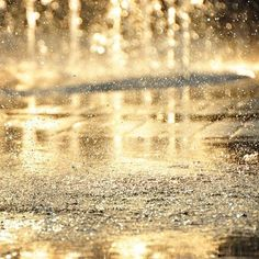 ~ rain that looks like gold