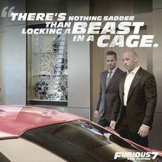 Image de paul walker and Vin Diesel Fast And Furious Memes, Fast And Furious Actors, Paul Walker Quotes, Rip Paul Walker, Furious Movie, The Furious, Movie Quotes, Funny Quotes, Funny Pics