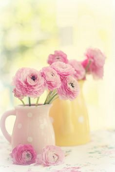 Sweet summer by lucia and mapp, via Flickr