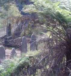 Real Ghost Pictures: Haunting of Walhalla Cemetery - Paranormal 360