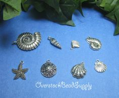 Sea Shell Charm Collection Charm Mix Large Nautilus Sand Dollar Oyster Abalone Spiral Clam Starfish Scallop Shells 8 Pieces 9032 by OverstockBeadSupply on Etsy