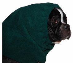 BOSTON TERRIER Dog Hood by VoyagersK9Apparel on Etsy, $21.00