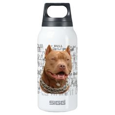 Pitbull dog SIGG thermo 0.3L insulated bottle
