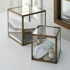 Lovely in their simplicity, brass-framed glass boxes display small collectibles, hold office supplies or create a hothouse environment for small botanicals.