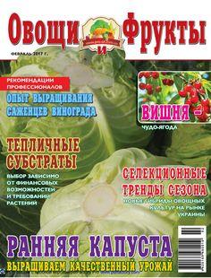"""""""Овощи и фрукты"""", февраль 2017"""