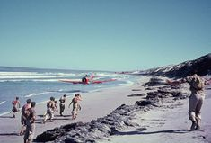 South African Air Force Harvard trainer rips up a beach on the Atlantic coast near Saldanha Bay with its propeller tips no more than three feet from the sandy surface. South African Air Force, Wagon R, Aviation Humor, Civil Aviation, Historical Images, Photo Story, Military Aircraft, Beach, Travel