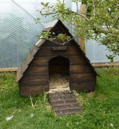 Duck house how cute gotta love the furry babies for Duck shelter designs
