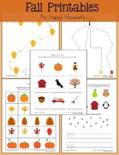 Free Fall Worksheets