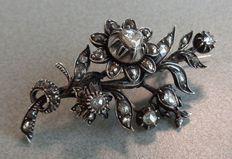 Antieke diamanten tak broche. Hollands, ca. 1840. Zeeland
