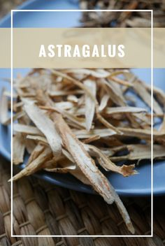The herb Astragalus benefits a wide variety of health conditions. In Traditional Chinese Medicine it has a long history of beneficial use. Health And Beauty, Health And Wellness, Health Fitness, Chinese Medicine, Herbal Medicine, Healthy Mind, How To Stay Healthy, Natural Health Tips, Creative Food