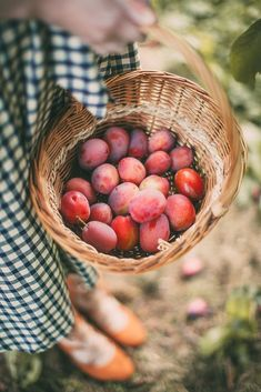 In a modern world it's very easy to forget that autumn also means harvest time…Pinned by - food photography/food styling Fruit Tree Garden, Garden Trees, Fruit Trees, Photo Food, Harvest Time, Fruits And Vegetables, Farm Life, Country Life, Food Styling