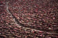 This is Tibet: 40,000 Tibetan monks and nuns live here to study dharma, not 40,000 Chinese. May they survive in peace, free from the genocide and oppression of the Chinese invaders.