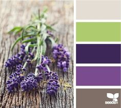 Purple color scheme// Trying to work with my current bedspread + sheet theme... need green, cream & tan accents...