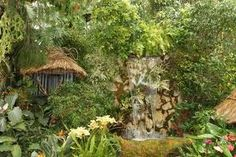 photos of beautiful tropical gardens - Google Search