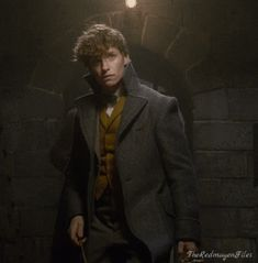 """The Redmayne Files — Crimes of Grindelwald: First Peek! """"If you'd ever..."""