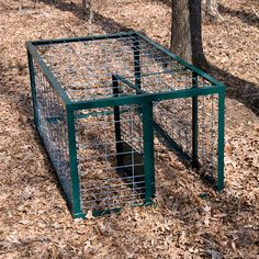 hog traps novel and very useful animal trap is the round hog trap