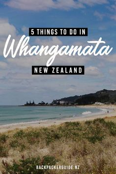 What are the activities and attractions in Whangamata? Find out about the things to do in Whangamata, New Zealand, with this complete list. New Zealand Attractions, Stuff To Do, Things To Do, New Zealand Travel Guide, Hotels, Local Tour, State Of Arizona, Beach Walk, Sandy Beaches