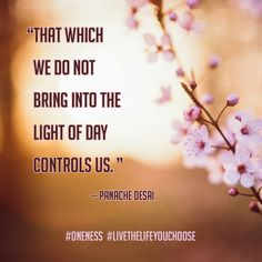 """""""That which we do not bring into the light of day controls us."""" -- Panache Desai"""