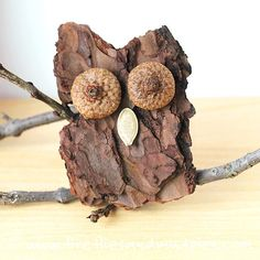 Fall nature crafts for preschoolers: tree bark owls DIY from Fireflies and Mudpies