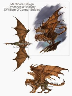 dracopedia the bestiary pdf