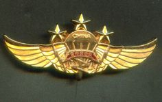 China PLA Airborne Special Forces - Thor Commando Top Class Award Pin badge