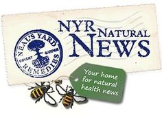Neal's Yard Remedies Natural News - home made insect repellent using essential oils. Natural News, Natural Health, Health And Beauty Tips, Health Advice, Clary Sage Essential Oil, Essential Oils, Neals Yard Remedies, 26 November, Cough Remedies