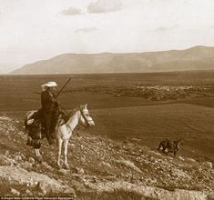 The largest of the three mountains on the east of the plain of Esdraelon, is Mount Gilboa,...