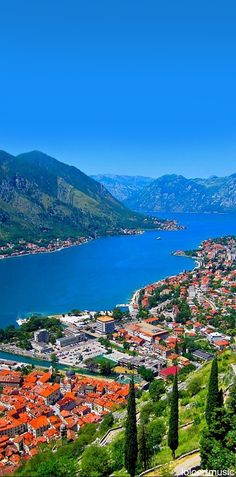 Kotor , MONTENEGRO // In need of a detox tea? Get 10% off your teatox order using our discount code 'Pinterest10' on www.skinnymetea.com.au X