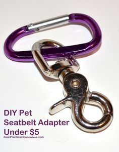 Real Practical Housewives: Taking Your Dog on Vacation & DIY Seatbelt Adapter