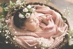 Kelly Kristine Photography | Rustic newborn session, newborn flowers