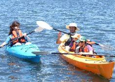 白樺湖カヌースクール - Google 検索