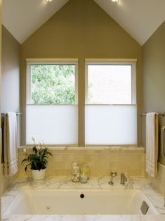 Bathroom Windows Design, Pictures, Remodel, Decor and Ideas - page 9