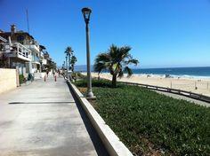Manhattan Beach City Council passed a plastic bag ban in July 2008.
