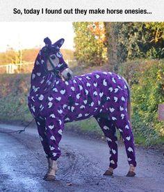 A Horse In PJ's