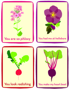 Timber Press is devoted to sharing the wonders of the natural world by publishing books in the fields of gardening, horticulture, and natural history. Valentine Crafts, Be My Valentine, Valentine Ideas, Gardening Memes, Heart Beet, Garden Quotes, Natural World, Horticulture, Amazing Gardens