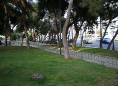 Το Άλσος της μιας Νυκτός Sidewalk, Side Walkway, Sidewalks, Pavement, Walkways