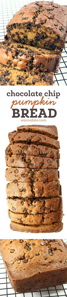 This is the perfect pumpkin bread for fall: Chocolate Chip Pumpkin Bread… Easy Pumkin Bread, Pumpkin Bread Recipes, Chocolate Pumpkin Bread, Healthy Pumpkin Bread, Pumpkin Loaf, Pumpkin Spice, Chocolate Brown, Chocolate Chocolate, Chocolate Covered