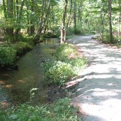 Loantaka Brook Reservation | New York-New Jersey Trail Conference