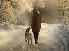 It's so nice to be at Grandma's house. One of the neighbor's dogs is going for a walk with me, Duncan won't go, it's too snowy & cold.... by elena shumilova